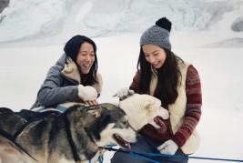 Experience Dog Sledding